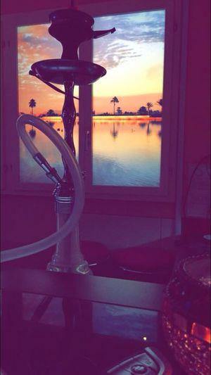 Shisha Relax Marrakesh Club & Lounge Nargile Waterpipe Hookah Grapefruit Flavour