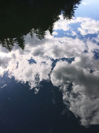Sky Reflection Nature Tranquility Water Tree Beauty In Nature Cloud - Sky Scenics Day Outdoors Abstractions Abstract Nature Silhouette Forest Reflections Scenic View