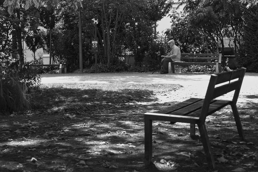 B&W Collection B&w Street Photography Bench Little Break Old Man Solitude Square Street Photography Streetphoto_bw Tranquil Scene Tranquility Tree Tree Trunk