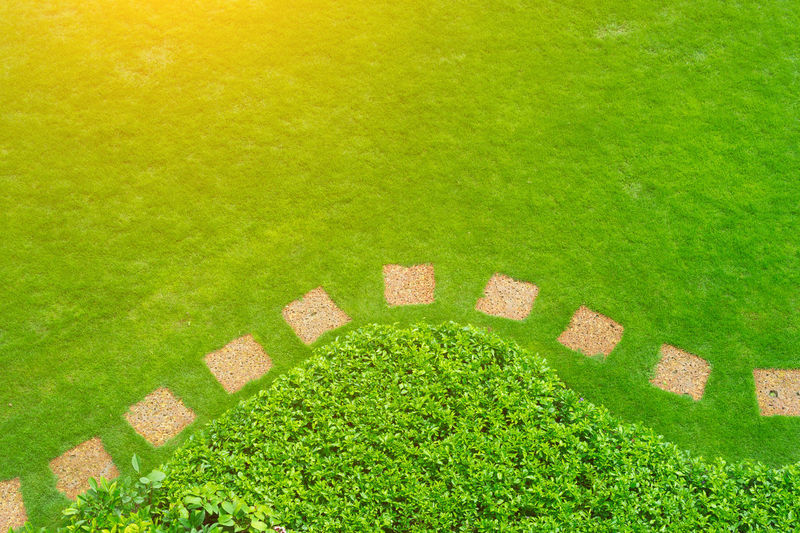Sunny morning walk in the park with a view on the freshly cut lawn. Top view Landscaped garden path in garden.pathway. Arched walkway in the park on a green lawn and flower garden. Backgrounds Copy Space Day Field Formal Garden Garden Grass Green Color Growth Hedge High Angle View Land Lawn Nature No People Ornamental Garden Outdoors Park Park - Man Made Space Plant Stepping Stone