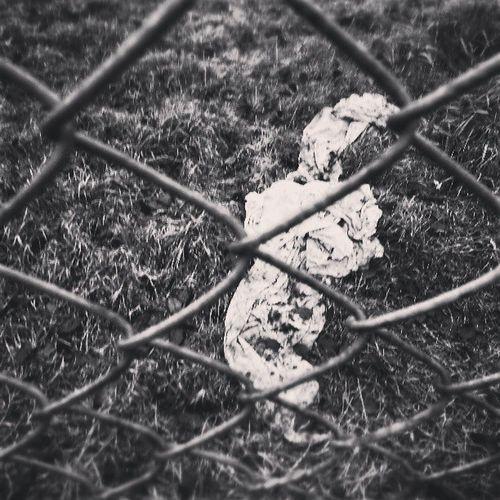 Cloth, Fence & Grass Snapseed Grass Blackandwhite Love tweegram instagood photooftheday iphonesia instamood igers instagramhub picoftheday instadaily bestoftheday igdaily instagramers webstagram follow statigram lifesutton london greaterlondon sutton green