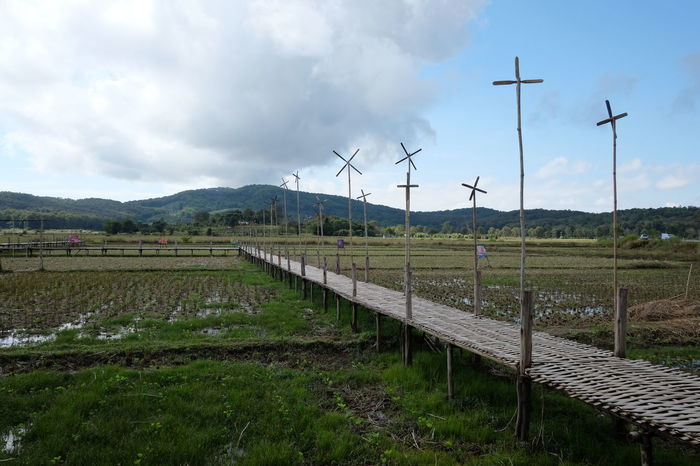 Agriculture Alternative Energy Cloud - Sky Day Environment Environmental Conservation Field Fuel And Power Generation Grass Land Landscape Nature No People Outdoors Renewable Energy Rural Scene Sky Technology Turbine Wind Power Wind Turbine