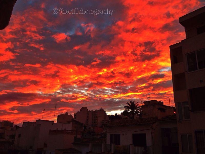 Tadaa Community Sky Is On Fire EyeEm Best Shots - Sunsets + Sunrise EyeEm Best Shots - Landscape