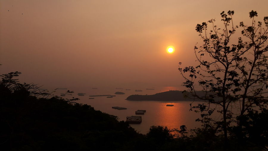 Good morning sunshine @Kho Si Chang Oceanside Ocean View Sea Warm Morning Si Chang, Thailand Sirach, Thailand Good Morning Sun Rise Sun Rise Collection Sun Rises For A New Day Island Si Chang Island Kho Si Chang Sunshine Si Chang Island Tree Water Sunset