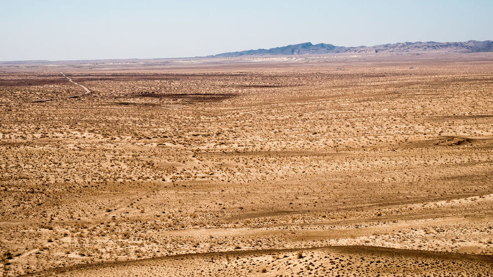 Kyzylkum desert - Road to the ancien Aral Sea Camel Desert Desert Beauty Desert Landscape Desert Life Deserts Around The World Dromadaire Dromadaires Gear Kyzylkum Kyzylkumdesert NOMAD Uzbekistan