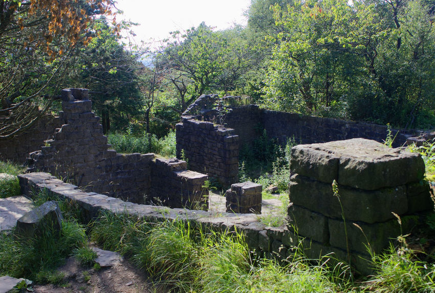Outdoors Day No People Sunlight Tree Shadow Nature Sky Ruins Of Building Ruins Building Exterior History
