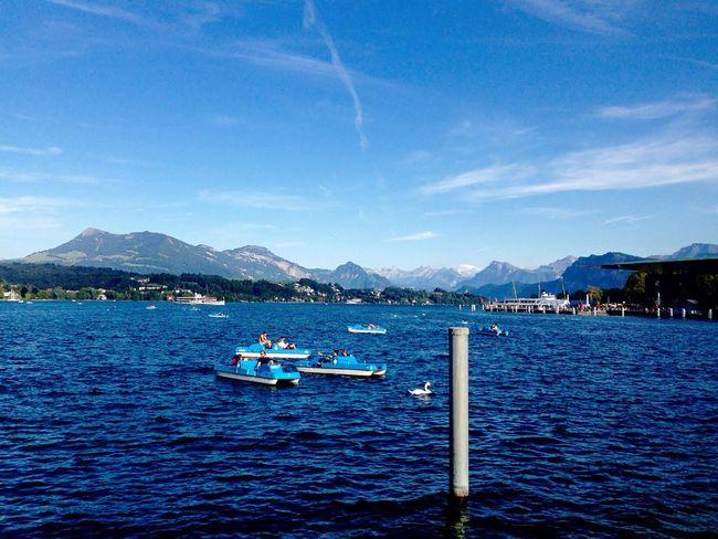Lake View Switzerland Luzern Lake Mountains Sun Beautiful Boat Water Traveling