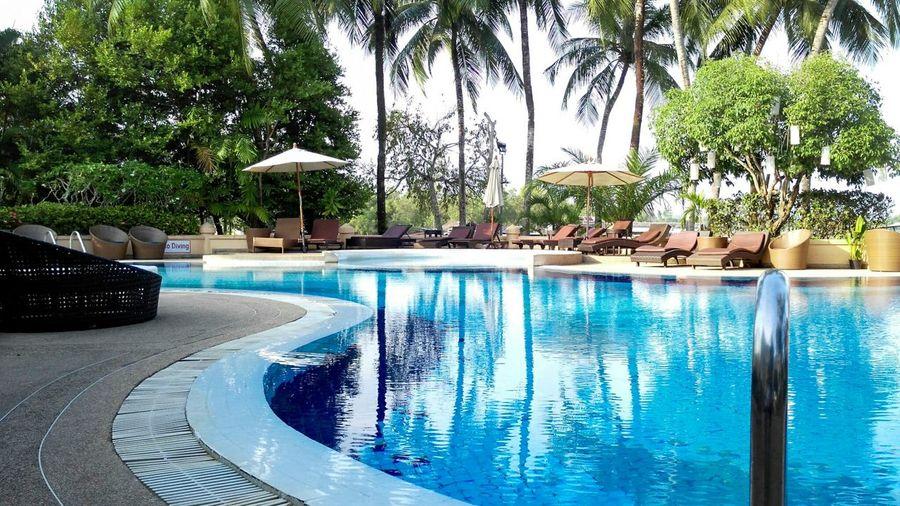 View of swimming pool at resort