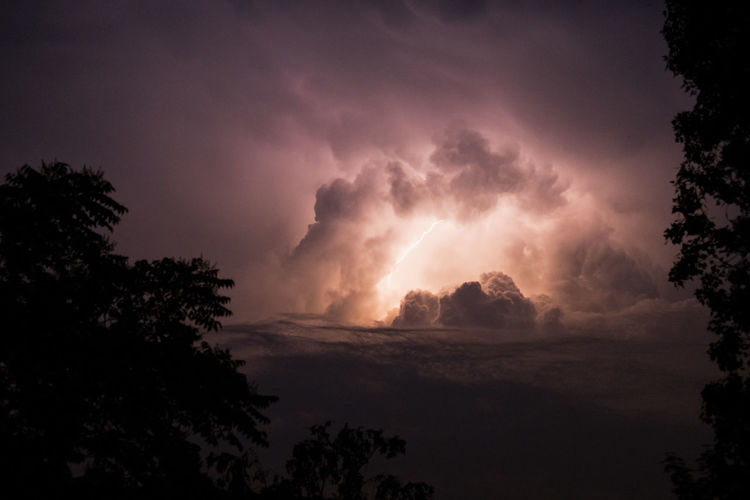 Low angle view of storm clouds over silhouette trees