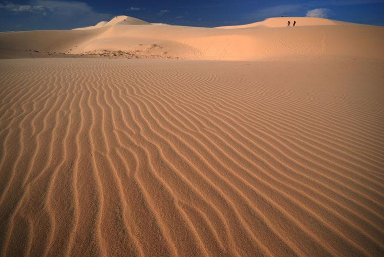 Distance shot of people walking at desert