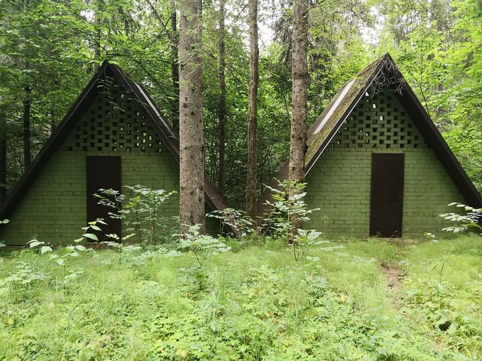 Wooden house amidst trees and plants growing in field
