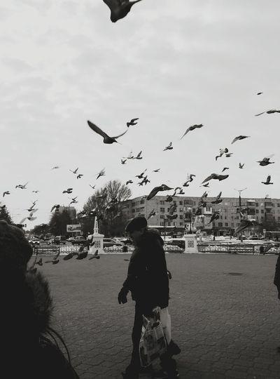 Full length of woman flying birds in city against sky