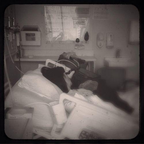 Epilogue, Hospital Impressions