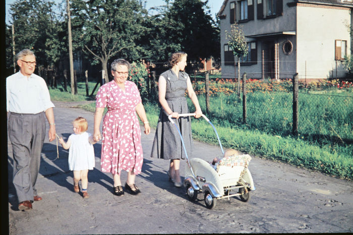 Familenspaziergang in Lützenkirchen, 1956 Childhood Offspring Child Family Daughter Parent Girls Group Of People Mother Full Length Father Females Togetherness Males  Men Adult Tree Emotion Women Son Outdoors Spaziergang Durch Den Herbst. Familie Altes Familienfoto