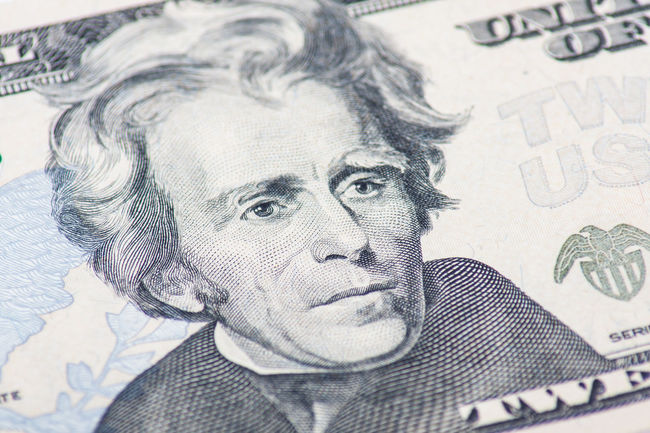 Former US president Andrew Jackson on twenty dollar note Andrew Jackson Close-up Currency Detail Dollar Notes Finance IRS Macro Macro Photography Money Portrait Presidents US Dollar Us Presidents USA