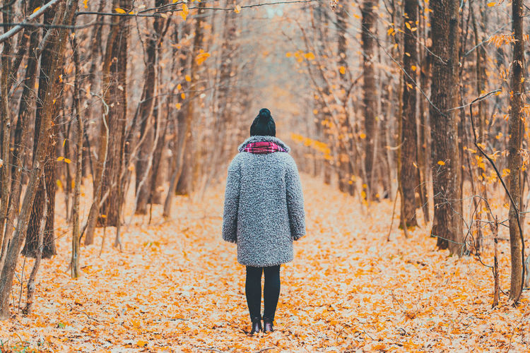 Young woman standing alone along trail in autumn forest. Back view. Travel, freedom, nature concept. Rear View Tree Autumn One Person Land Forest Plant Part Women Plant Adult Leaf Nature Leisure Activity Walking Lifestyles Clothing Change Winter Beauty In Nature Outdoors Warm Clothing WoodLand Autumn Collection Hairstyle