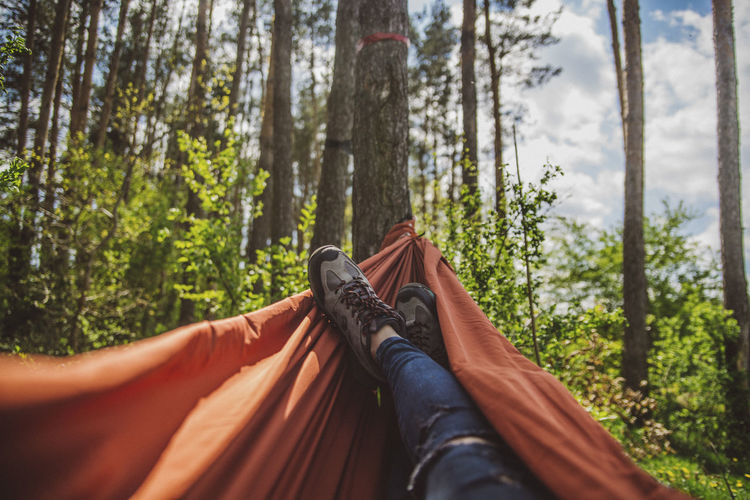 Low section of woman relaxing on hammock in forest