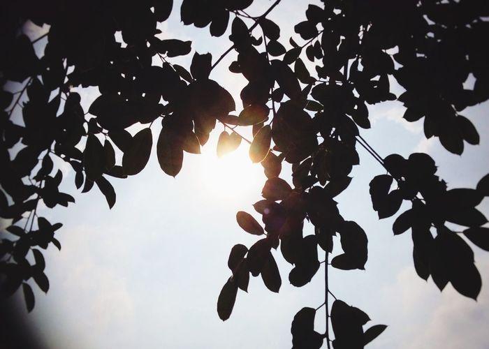 Give me a little sunshine...z🌞🌞🌞