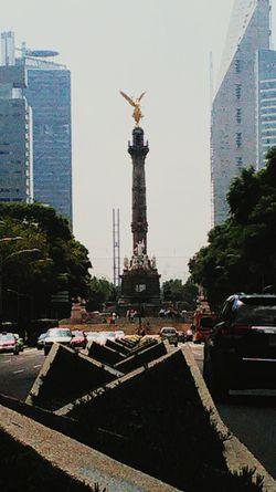 Reforma, y el angel a la independencia! Mexico City Mx