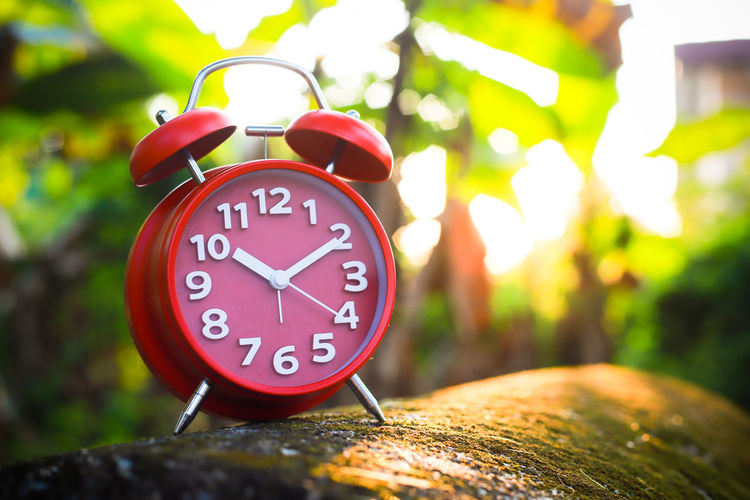 Red Alarm Clock Red Alarm Clock Clock Hand Clock Clockworks Time Number Alarm Clock Focus On Foreground Clock Face No People Close-up Day Outdoors Circle Geometric Shape Red Minute Hand Tree Communication Shape Accuracy Nature Hour Hand