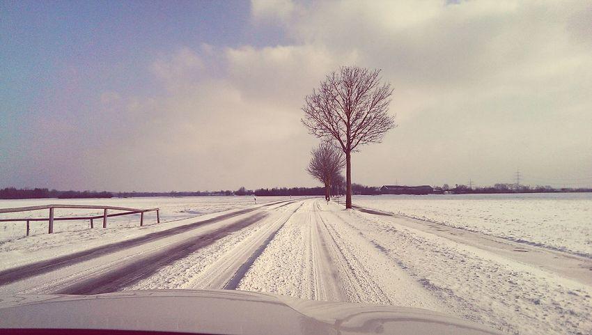 Snow ❄ Driving