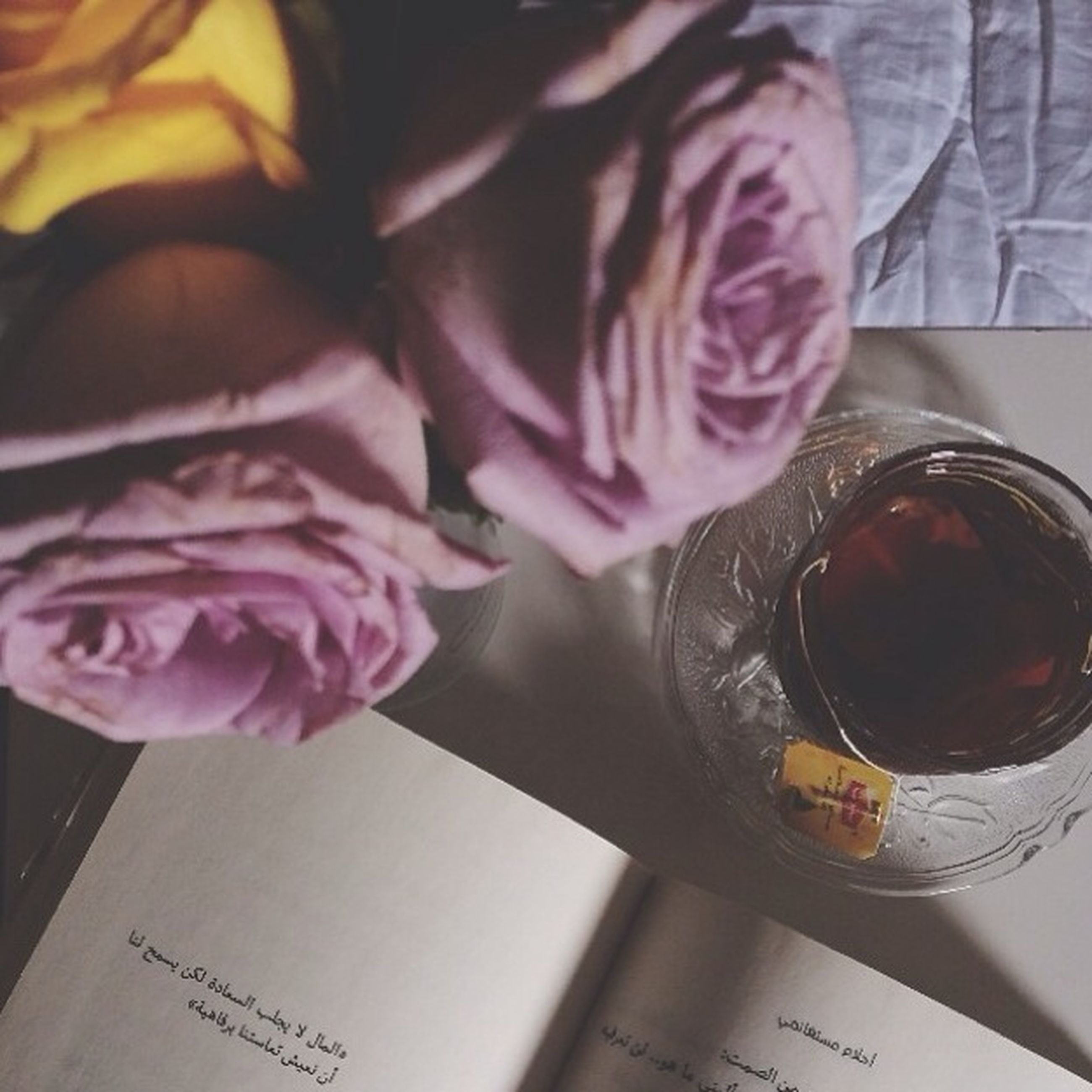 indoors, table, drink, food and drink, refreshment, close-up, freshness, still life, drinking glass, holding, high angle view, home interior, person, book, glass - material, lifestyles, communication, paper