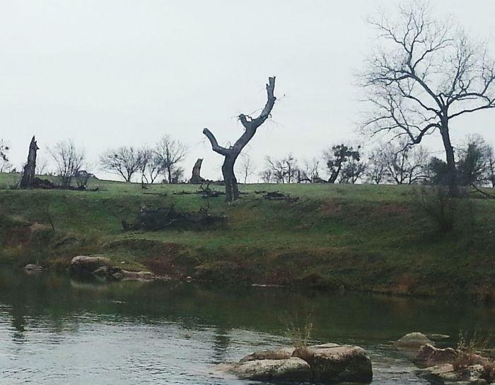 Riverrockin Nature's Art Tree Porn Texas Rocks Dirt Road Anthem: ♬♪ Nature Photography Natures Beauty Texas Hill Country Texas Landscape Texas RiversBeauty In Nature Outdoor Photography Follow Me On EyeEm