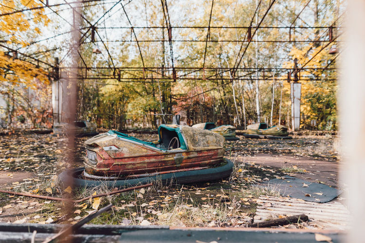 Man sitting on ship in forest