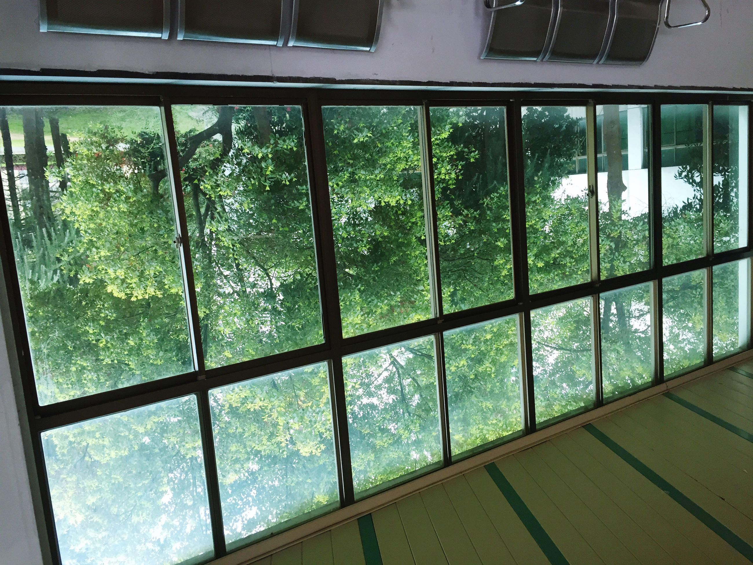 window, glass - material, indoors, transparent, architecture, built structure, tree, green color, building exterior, day, reflection, growth, no people, plant, house, sunlight, glass, railing, water, pattern