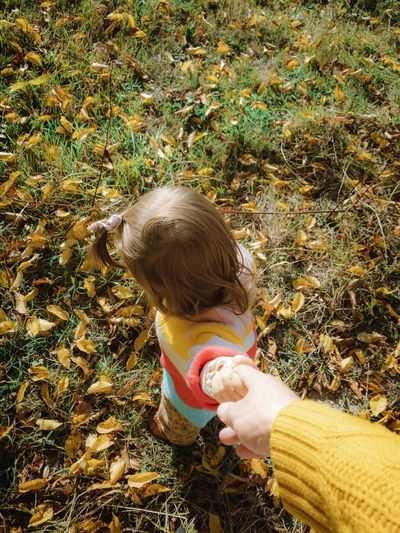 High angle view of girl on field during autumn