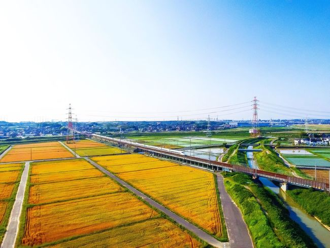 Aerial shot Clear Sky Copy Space Landscape Blue Field Day Scenics Tranquil Scene Agriculture Growth Outdoors Nature Tranquility Beauty In Nature Green Color No People Tourism Rural Scene Wide Shot Drone  Highspeedrail First Eyeem Photo