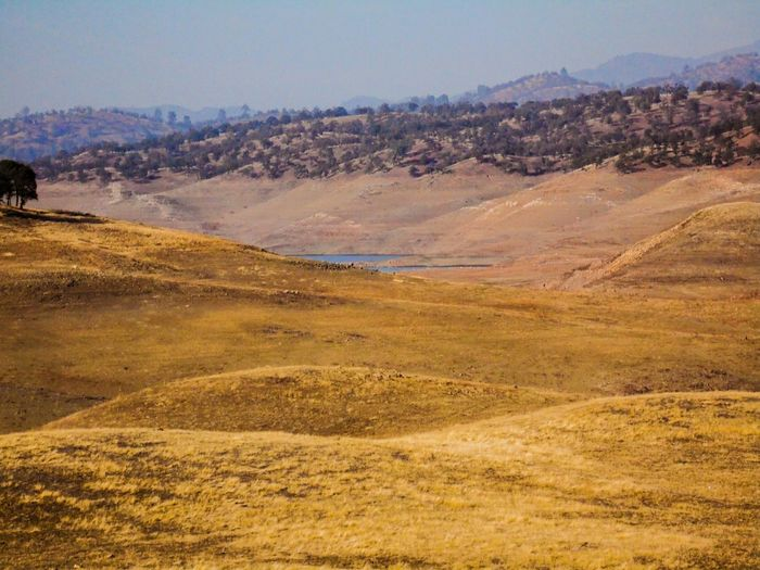 Visible retreat... California The View From Here Drought Wide Open Spaces Lake View Rural Scenes There Is No Planet B Peace And Quiet Dry