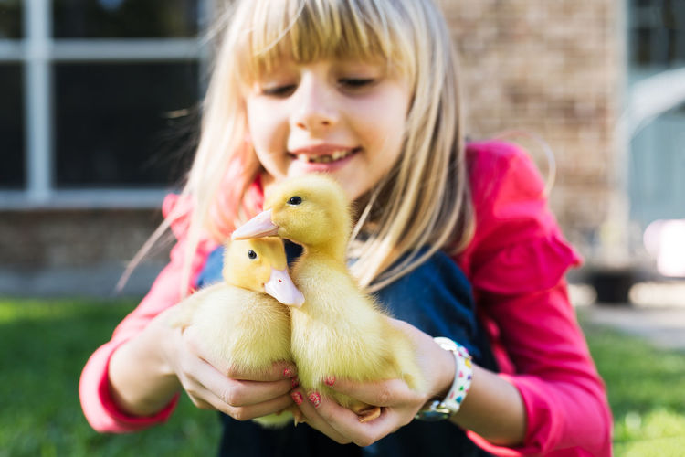Close-Up Of Girl Carrying Baby Chickens On Field