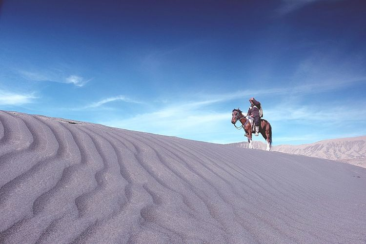 Desert Sky Sand Sand Dune Animal Themes One Animal Riding Arid Climate Blue Outdoors Domestic Animals One Person Full Length One Man Only Only Men Day Mammal Nature Adult People Bromo Mountain Whispering Sands