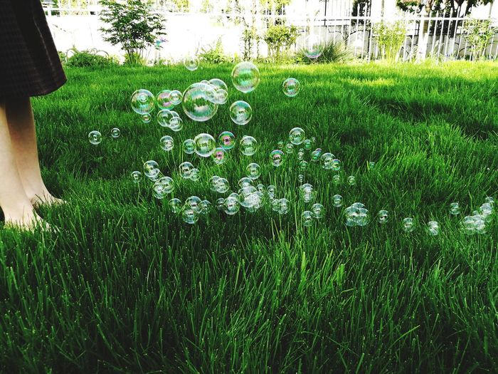 Fun Soap Bubbles Green Color Grass Kids Childhood Playing Outdoors Tree Low Section Grass Green Color Plant Sky Growing Domestic Garden Stay Out