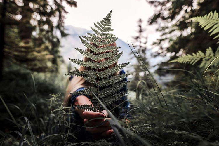 Woman Holding Ferns