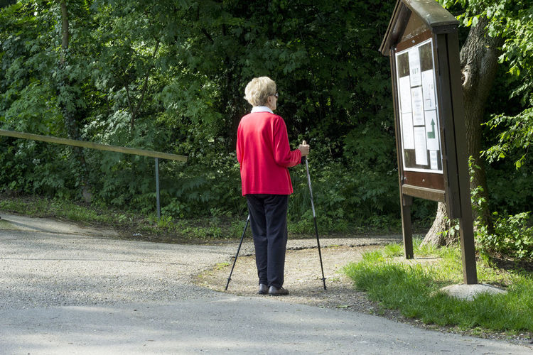 Rear view of senior woman with walking canes looking at road map