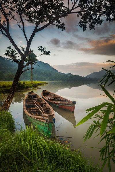 Water Rice Paddy Tree Rice - Cereal Plant Lake Nature Asian Style Conical Hat Nautical Vessel Outdoors Plant Fishing Net Landscape No People Wooden Raft Mountain Sky Day Sunken VSCO Vscocam Beauty In Nature NoEdits  Pattern Fullframe Reflection Lost In The Landscape