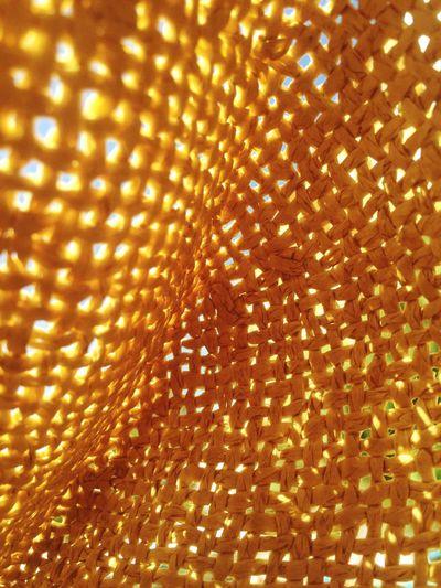 Close-up Freshness Hat Sunlight First Eyeem Photo