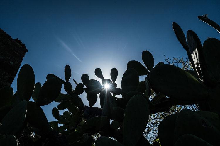 Silhouette people against sky
