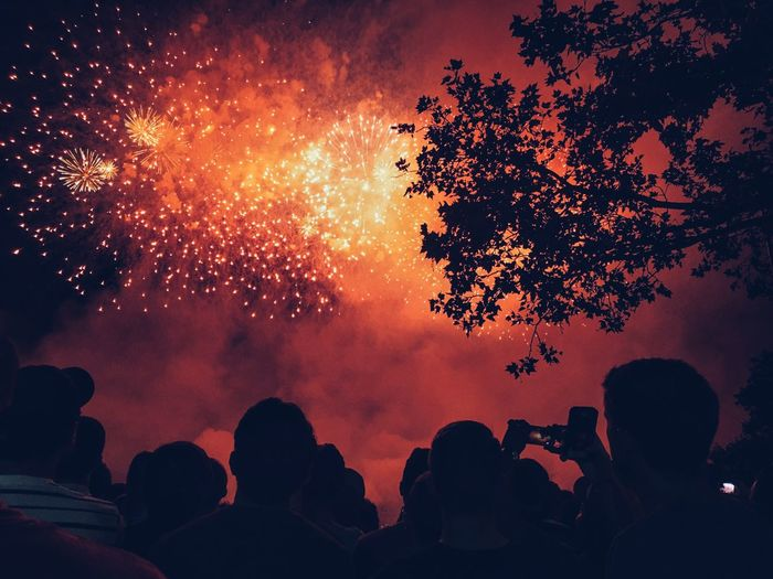 Low angle view of silhouette people looking at firework display in sky at night