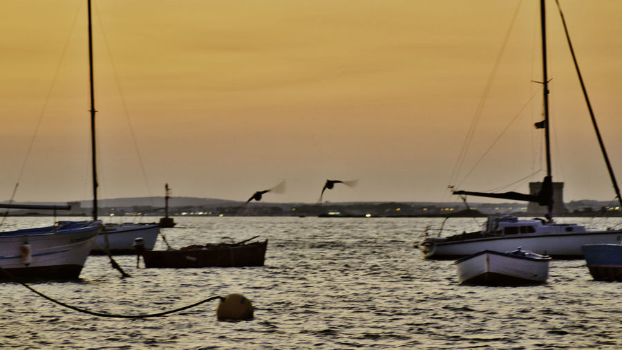 Sailboats moored in sea against sky during sunset
