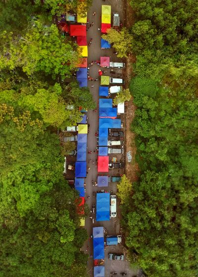 Aerial view of market amidst trees
