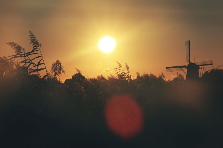 EyeEm Selects Sun Sunset Sky Beauty In Nature Nature No People Scenics Outdoors Tranquility Netherlands Rotterdam