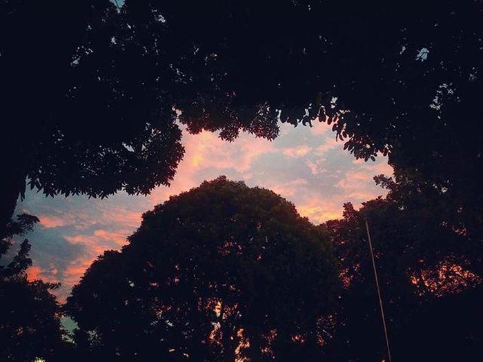 Langit ciputat selasa sore menghiasi kicruhnya penghitungan suara pemira tahun ini.. UIN Uinjkt Latepost Cintadamai Gasukaribut Ikhlaskankekalahan Belajarmenerimakekalahan