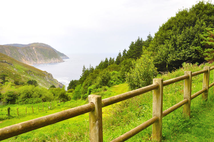 coast of death in galicia spain SPAIN Coast Of Death Galicia Spain Beauty In Nature Coast Of Death In Galicia Spain Day Field Grass Green Color Landscape Mountain Nature No People Outdoors Protection Scenics Sky Tranquil Scene Tranquility Tree