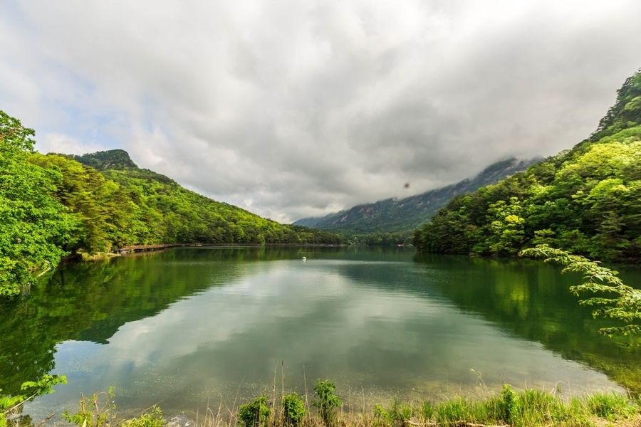 Water Cloud - Sky Beauty In Nature Plant Tranquility Sky Scenics - Nature Lake