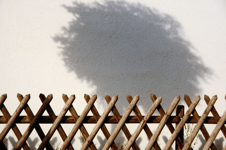 [ schattenreich ] - Shadows & Lights Tree Absence Architecture Boundary Close-up Concrete Day Focus On Shadow Full Frame Shot High Angle View Minimal Minimalism Photography No People Outdoors Pattern Shadow Sunlight Sunny Textured  Wall Wood - Material