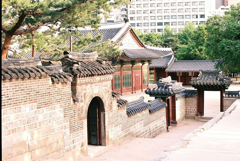 Film Photography 덕수궁(DeokSuGung) Korean Traditional Architecture Deoksugung EyeEm Korea EyeEm Best Shots Afternoon