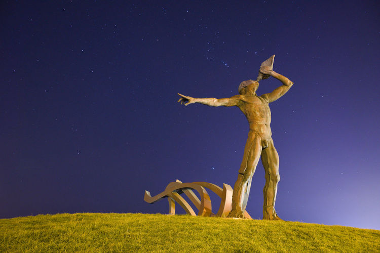Statue on grass against sky at night